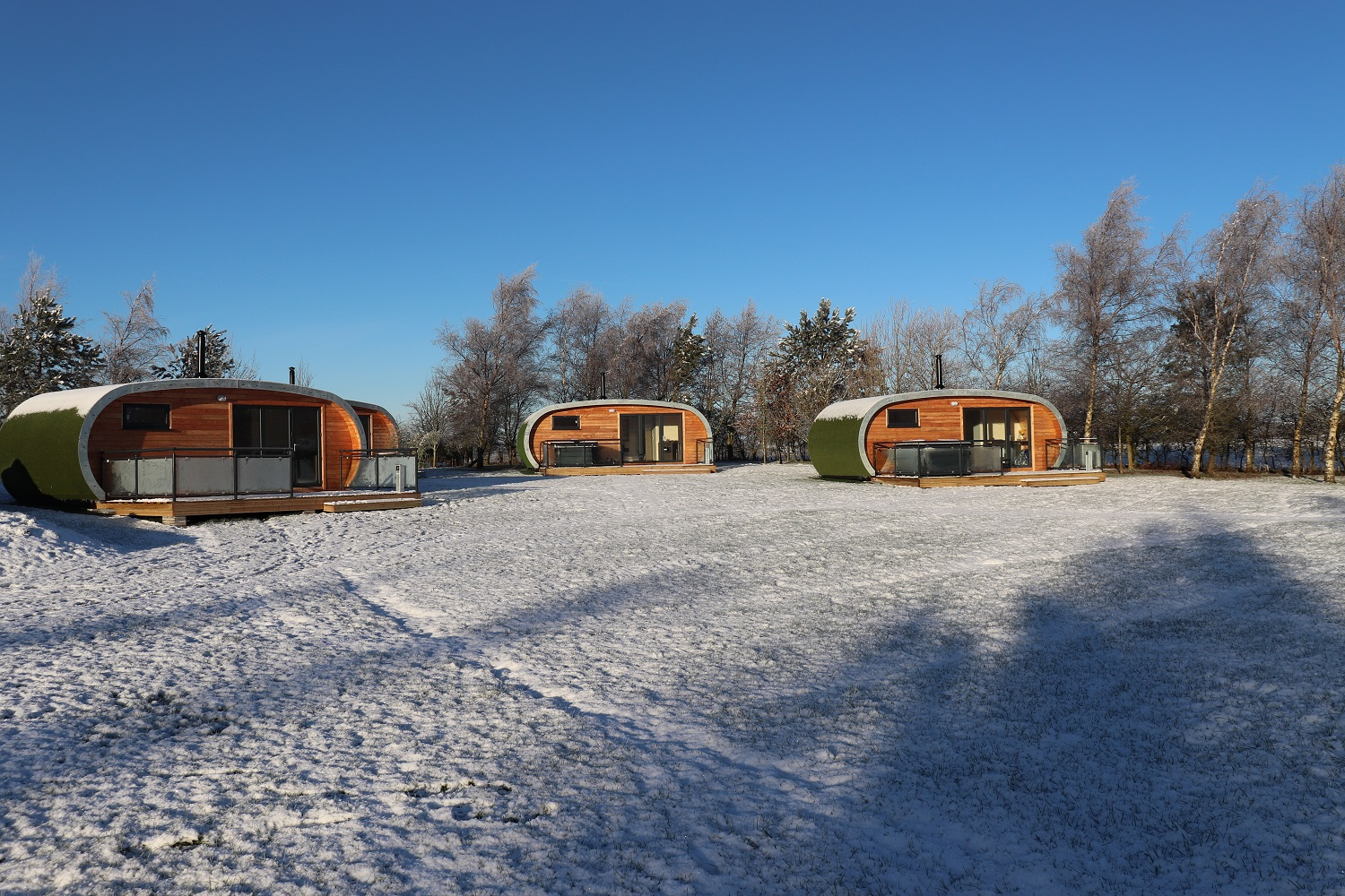 Pods in Snow